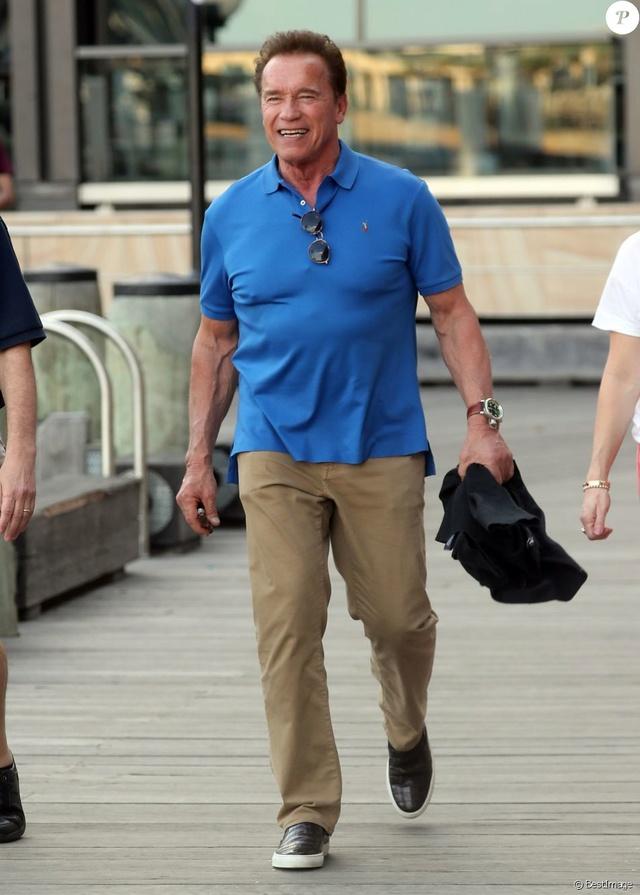 Arnold Schwarzenegger 39581110