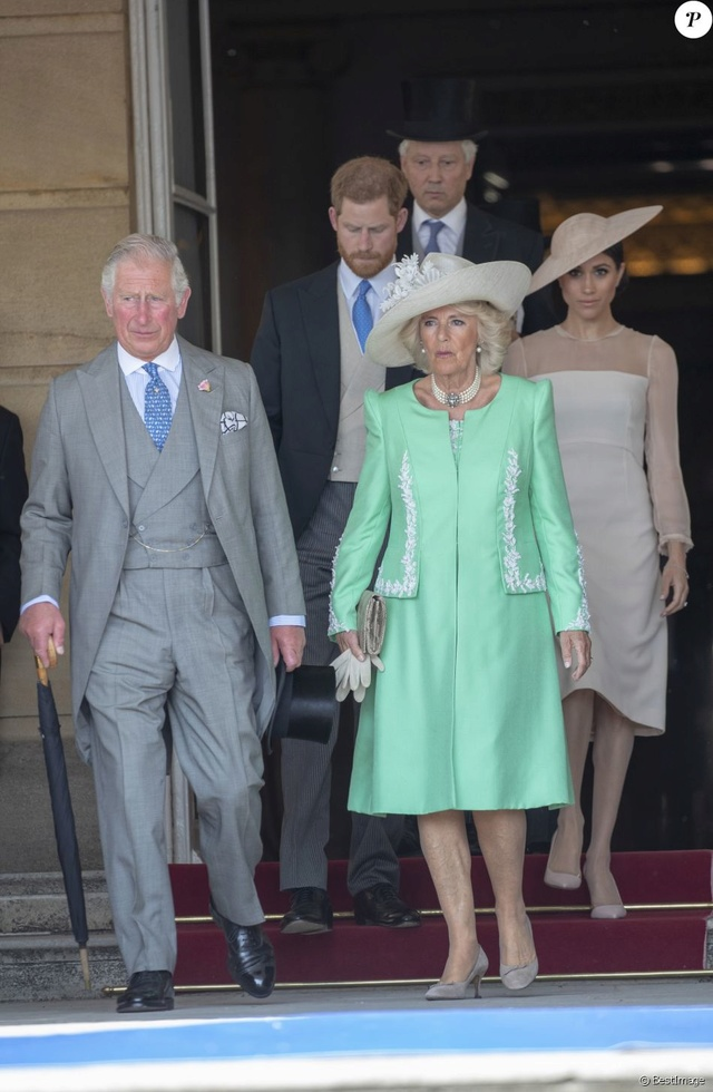 Prince Harry & Meghan Markle  - Page 2 40651010
