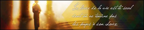 Jeu du Miaouss - Page 40 Banarc10