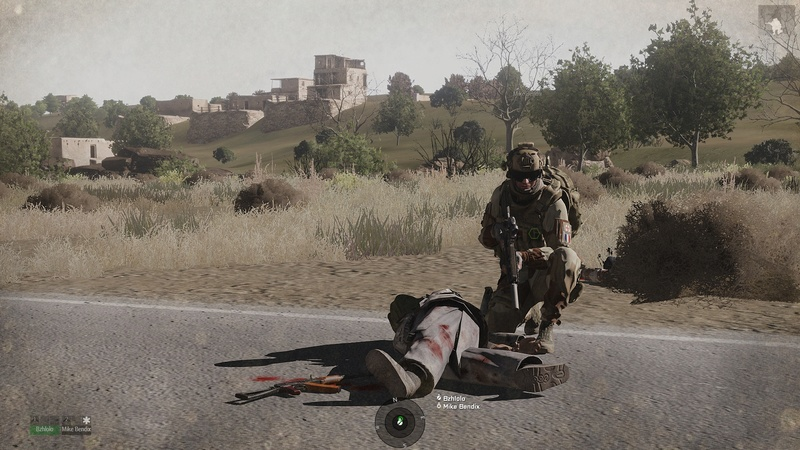 CONCOUR PHOTOS Arma3130