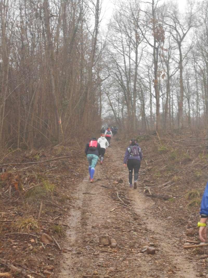 Sortie trail à Martres-Tolosane, dimanche 14 janvier 2018 Dscn0519