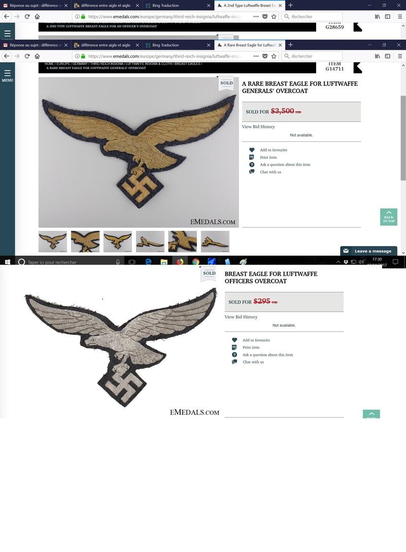 différence entre aigle et aigle Aigle_11