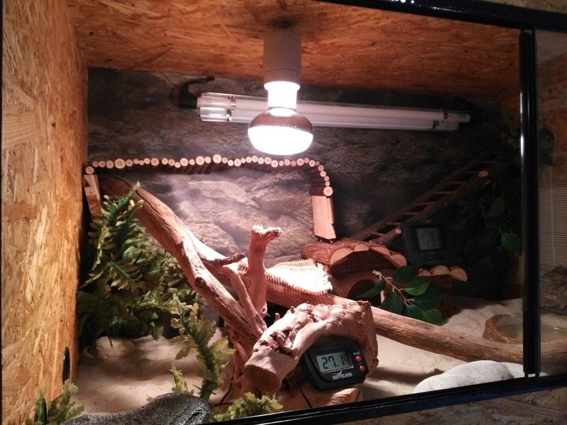 Dôme de lampe Img_2102