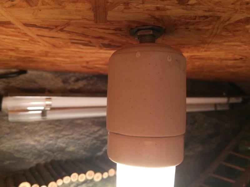 Dôme de lampe Img_2104
