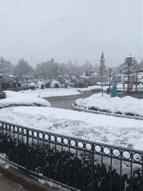 Les dégâts causés par les aléas climatiques à Disneyland Paris - Page 8 Img_0010