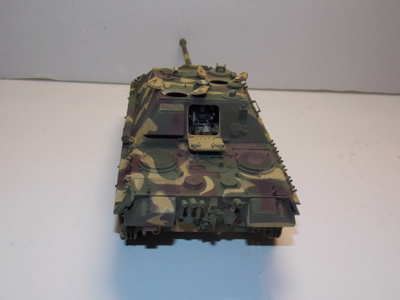 Jagdpanther early (DRAGO 1/35)+ fallschirmmjager  - Page 4 Dscn6224