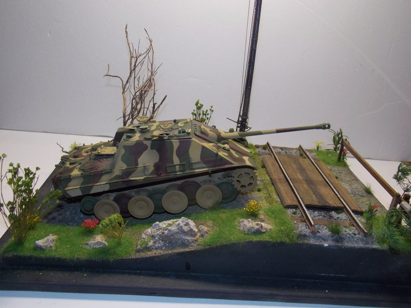 Jagdpanther early (DRAGO 1/35)+ fallschirmmjager  - Page 4 Dscn6225