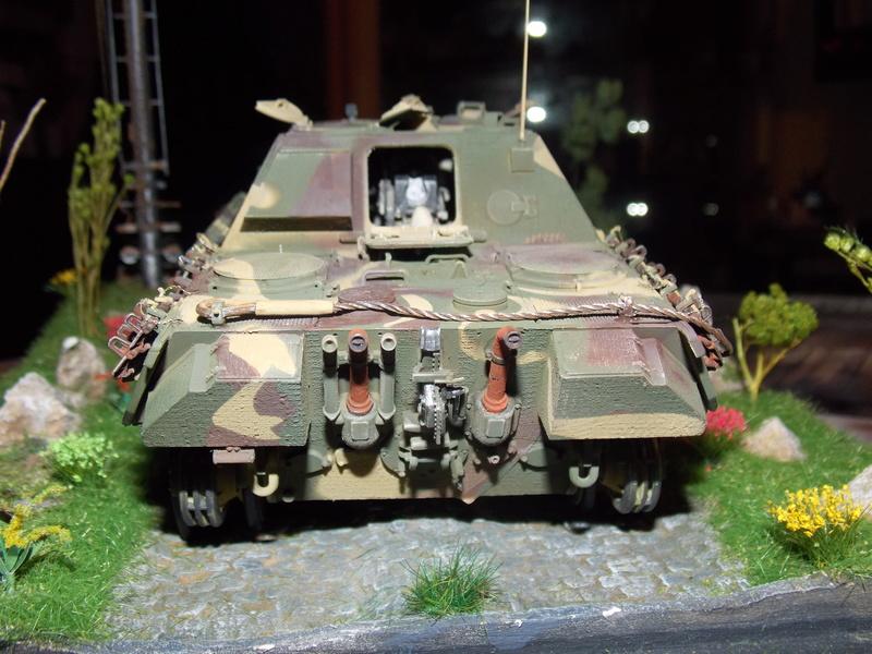Jagdpanther, Fallschirmjäger et décor perso (Dragon 1/35) - Page 5 Dscn6226