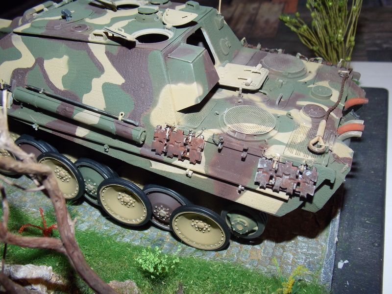 Jagdpanther early (DRAGO 1/35)+ fallschirmmjager  - Page 4 Dscn6235