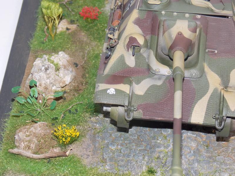 Jagdpanther, Fallschirmjäger et décor perso (Dragon 1/35) - Page 5 Dscn6245