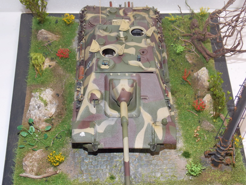 Jagdpanther, Fallschirmjäger et décor perso (Dragon 1/35) - Page 5 Dscn6247