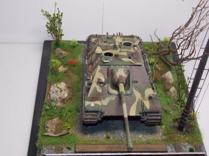 Jagdpanther, Fallschirmjäger et décor perso (Dragon 1/35) - Page 5 Dscn6263