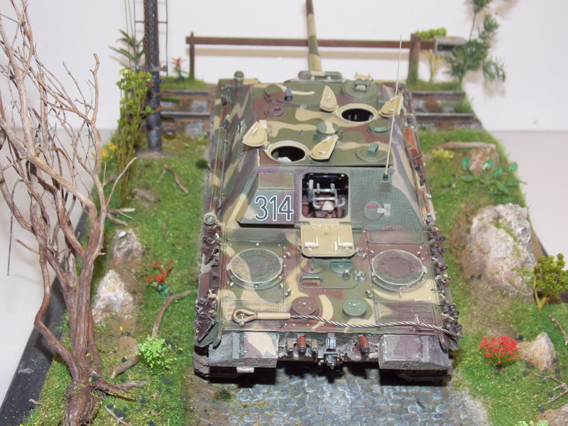 Jagdpanther, Fallschirmjäger et décor perso (Dragon 1/35) - Page 5 Dscn6267