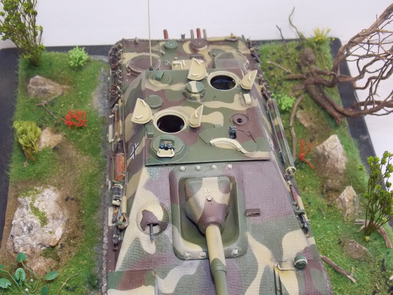 Jagdpanther early (DRAGO 1/35)+ fallschirmmjager  - Page 4 Dscn6269