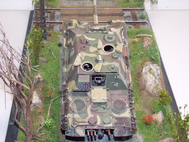Jagdpanther early (DRAGO 1/35)+ fallschirmmjager  - Page 4 Dscn6270