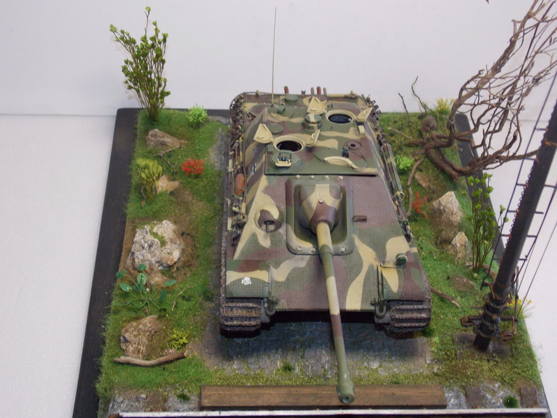 Jagdpanther early (DRAGO 1/35)+ fallschirmmjager  - Page 4 Dscn6276