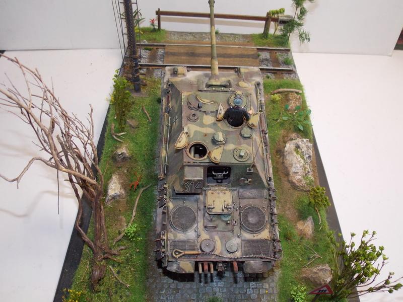 Jagdpanther early (DRAGO 1/35)+ fallschirmmjager  - Page 5 Dscn6358
