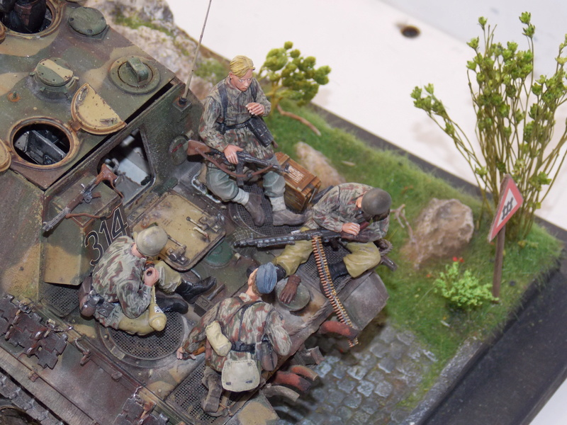 Jagdpanther early (DRAGO 1/35)+ fallschirmmjager  - Page 5 Dscn6385