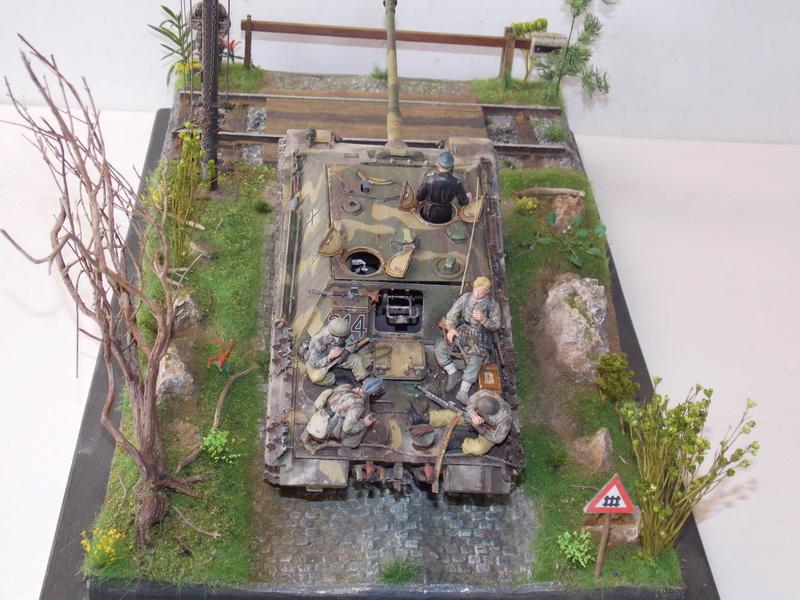 Jagdpanther early (DRAGO 1/35)+ fallschirmmjager  - Page 5 Dscn6386