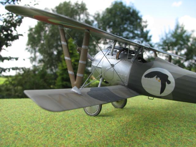 Nieuport 24 Img_2512