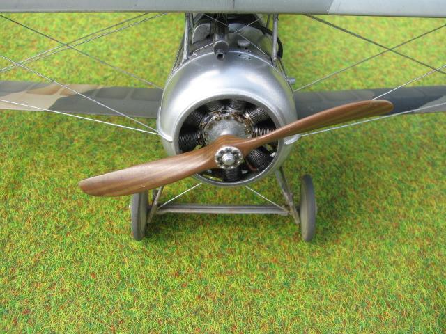 Nieuport 24 Img_2516