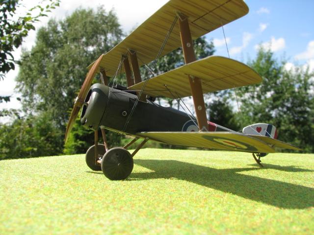 Sopwith Triplane Img_2519