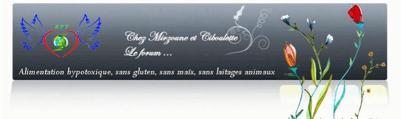 Mirzoune et Ciboulette SGSC