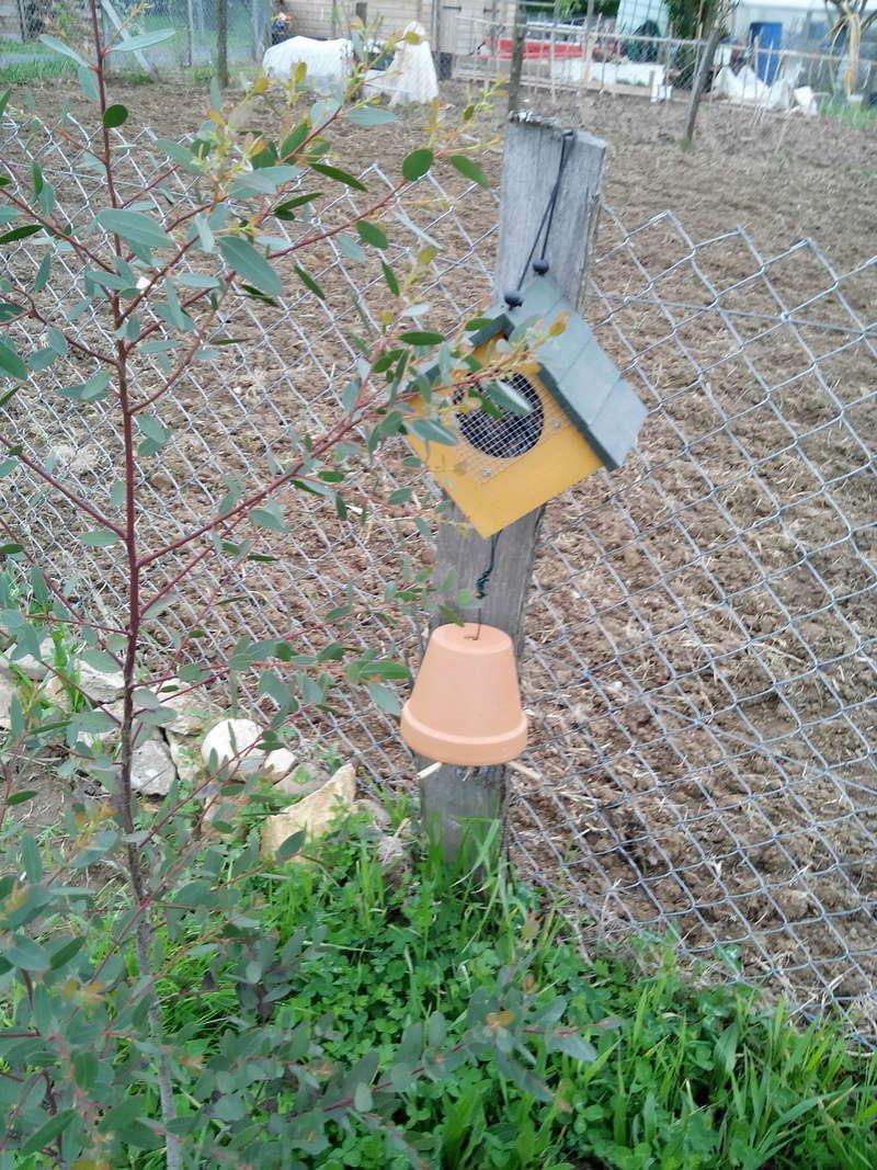 Habitats pour  insectes 04_20111
