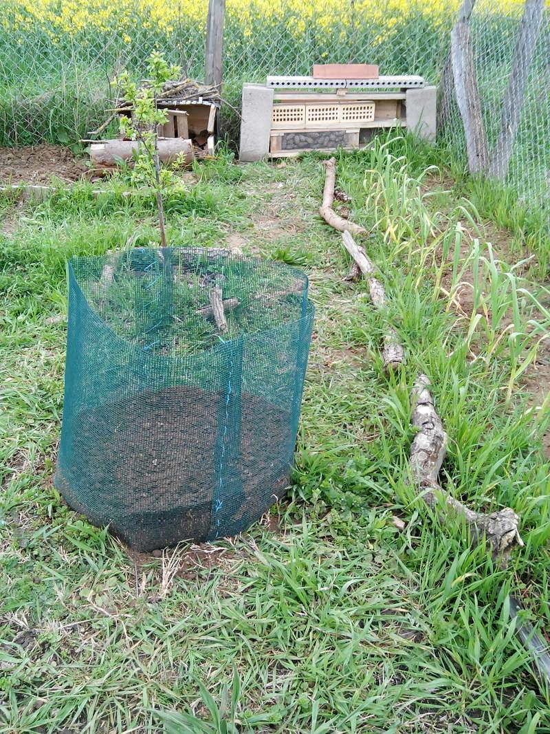 Habitats pour  insectes 04_20113
