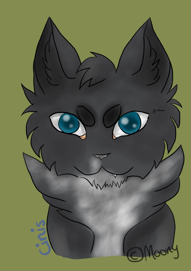 WindClan-Lager - Seite 5 Ci_mo10