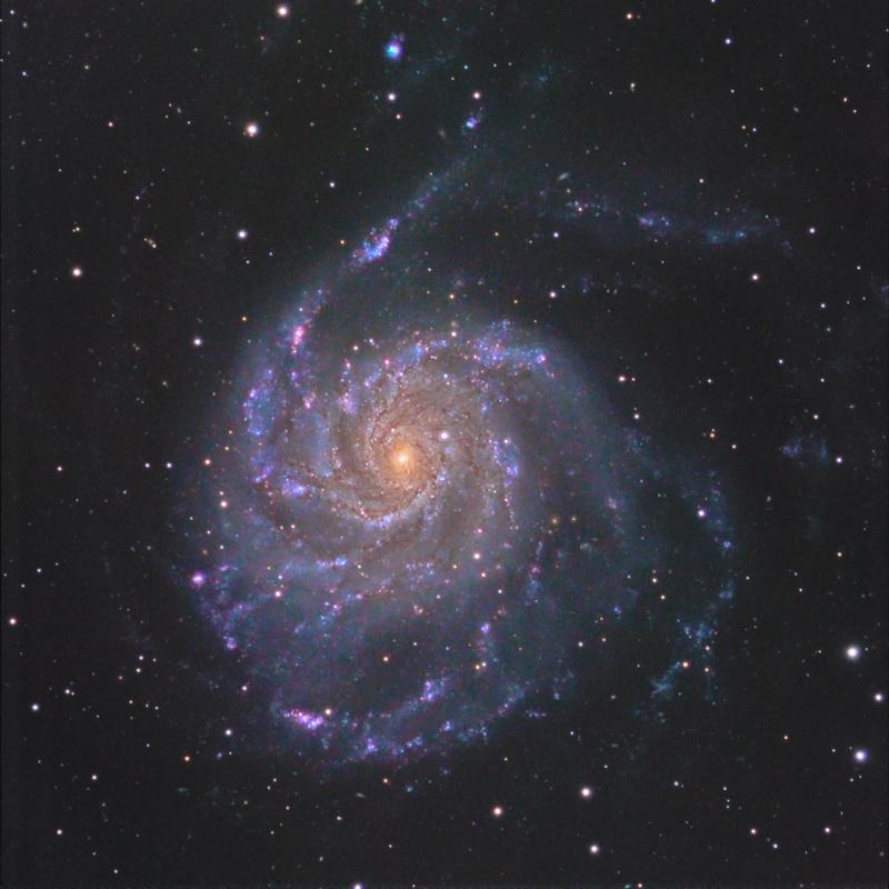 M101 avec différents setups de Sky Processing Team / C8EdgeHd 2m focale et Ts102 pour les couleurs Lrvb2f10