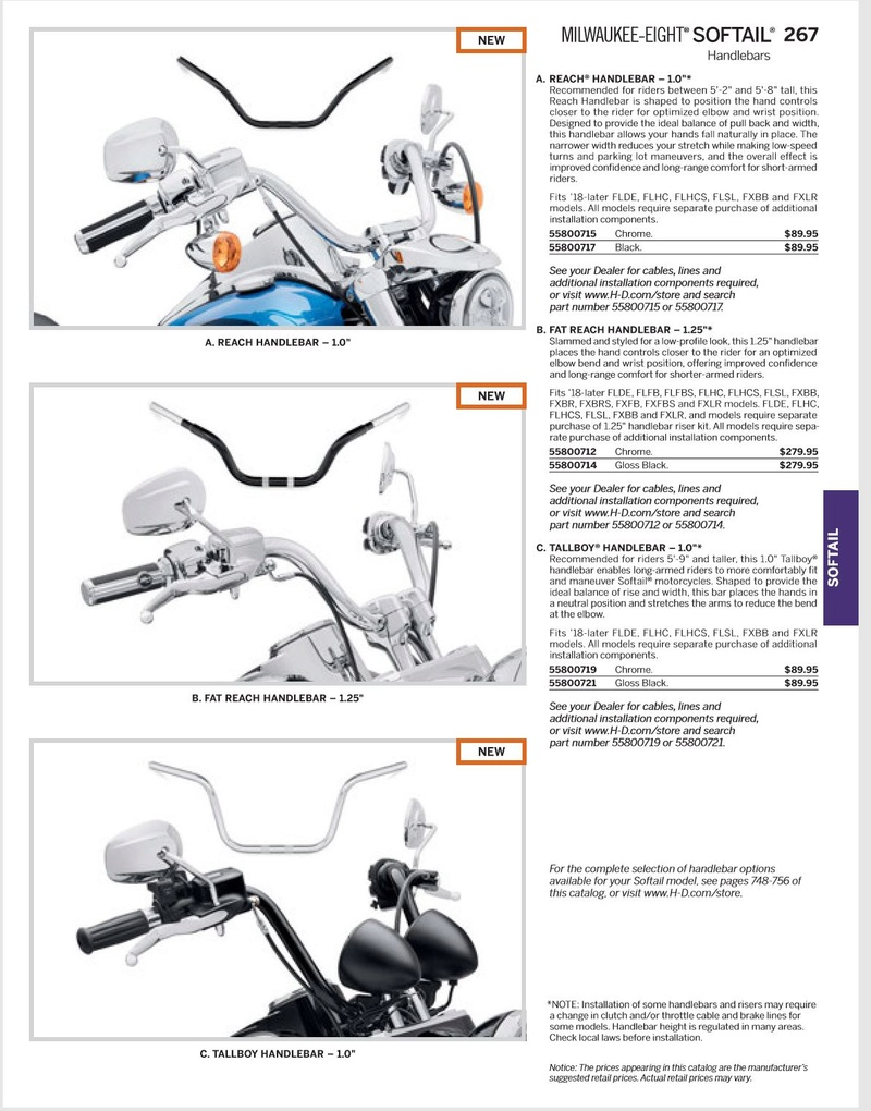 Que choisir: Dyna Low Rider 103 ou Softail Low Rider 107? - Page 5 Guidon10