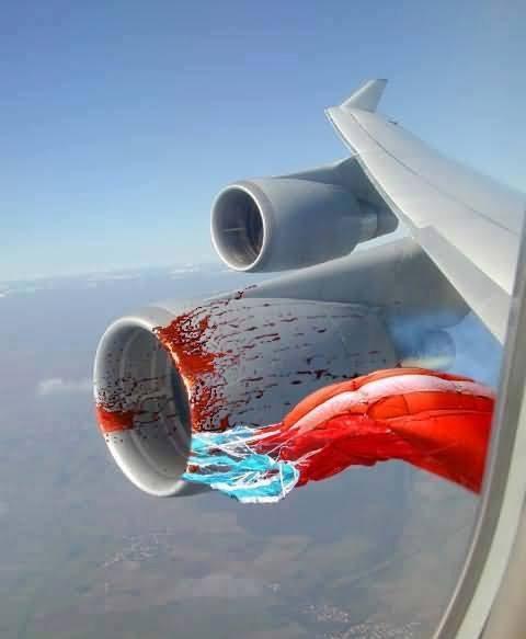 respectez vos hauteurs de vol !! Scratc11