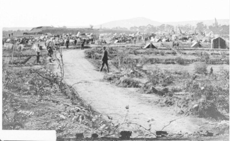 L'Historique du 14e Bataillon de Chasseurs. 1854 - 1962 Queule10