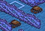 [ALL] Soluzione Gioco Coral Kingdom: Gara di Tartarughe #2 Scre1003