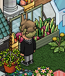Hashtag pasqua2018 su HabboLife Forum Scree687