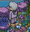 [ALL] Soluzione Gioco Coral Kingdom: Gara di Tartarughe #2 Scree997