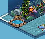 [ALL] Soluzione Gioco Coral Kingdom: Gara di Tartarughe #2 Scree999