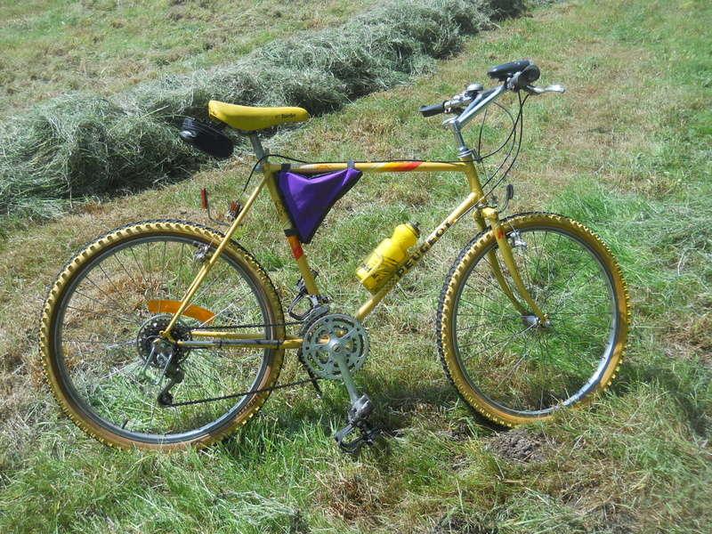 Vtt Peugeot crasy horse vtt1 bleu entre 1982 et 1984 ? Dscn5810
