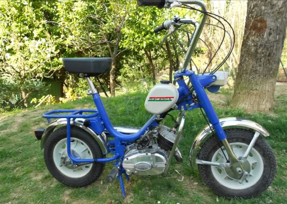Cyclo Malanca Malanc32