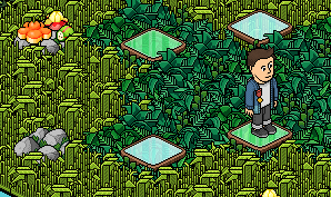 "[ALL] Habbo Memory Game | Livello ""Foresta"" 1 - Pagina 3 Scher245"