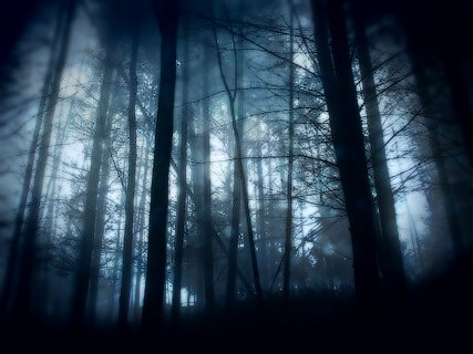 Images in the Night - Liniel Spooks10