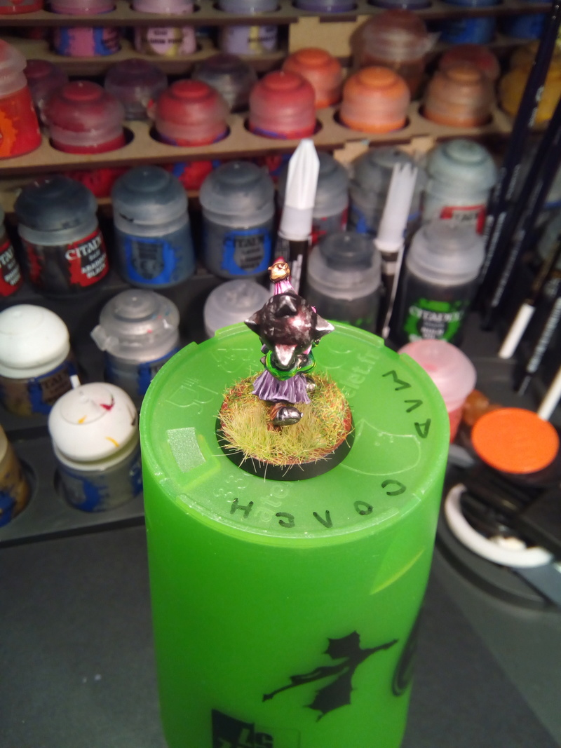 The Olive Bombs / Gobs Bloodbowl Team Fungus17