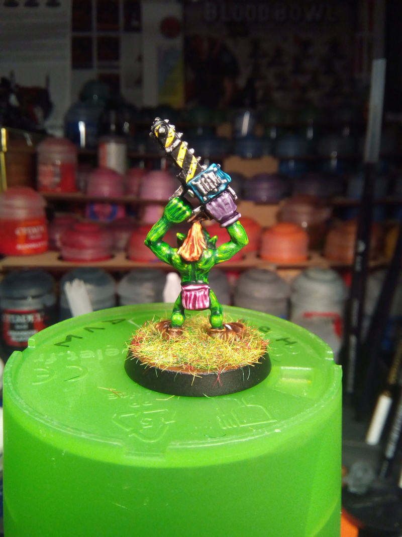 The Olive Bombs / Gobs Bloodbowl Team Olive_17