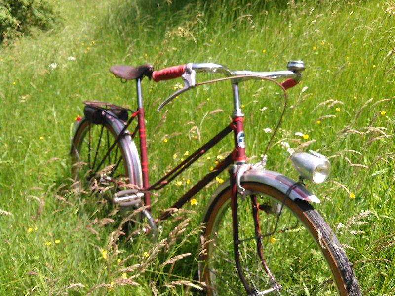 Selco jardinière 1956 Kimg0218
