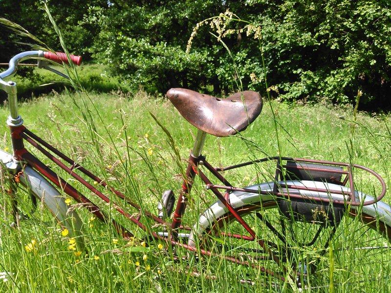 Selco jardinière 1956 Kimg0221