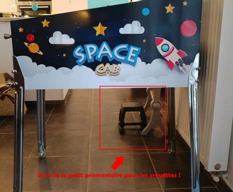 """[TERMINÉ] Nouveau Mini """"Space Cab"""" - Page 4 Test10"""