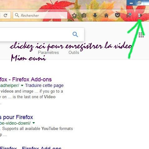 PLUGIN FIREFOX MOZILLA enregistrer directement videos youtube ou autres depuis votre navigateur Firfox Mozill12