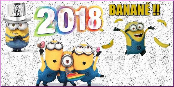 Bonne année 2018 25995010