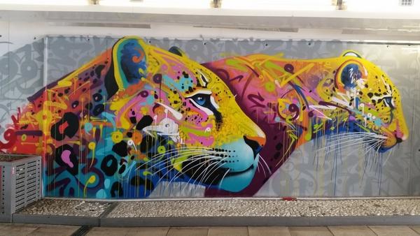 les plus beaux Street Art  20170811